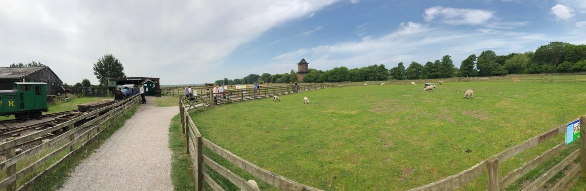 A Day Out at Windmill Farm